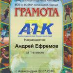 Парный турнир 22.07.18г. г.Александрия
